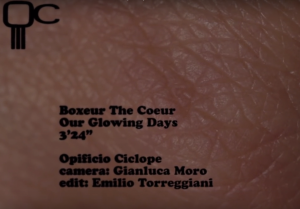 Boxeur The Coeur | Our Glowing Days