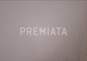 Spot Premiata 2013